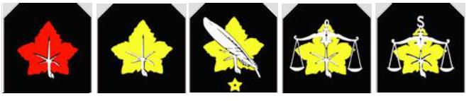 Cherche insigne 2020-010