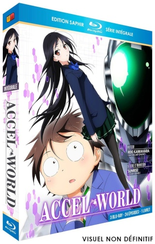 [ANIME/MANGA/LIGHT NOVEL] Accel World - Page 2 601310
