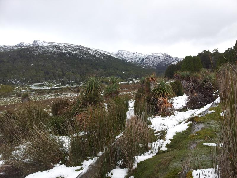 Tasmania 2014 08110