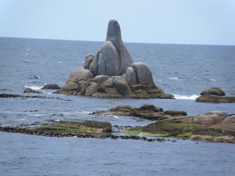Tasmania 2014 Pc310010