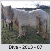 Galop Pour La Vie Diva-v10