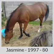 Galop Pour La Vie Jasmin19