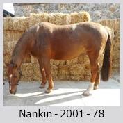 Galop Pour La Vie Nankin10