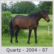 Galop Pour La Vie Quartz11