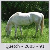 Galop Pour La Vie Quetch10