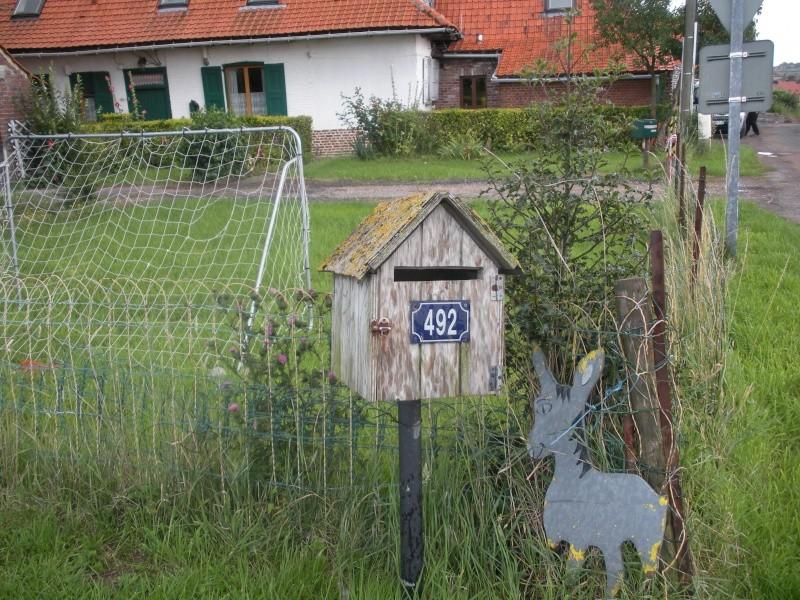 Séjour au milieu des ânes en roulotte Dscn8113
