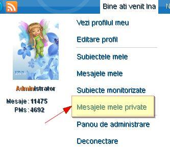 Mesagerie Privata / Mesaje Private 46253810