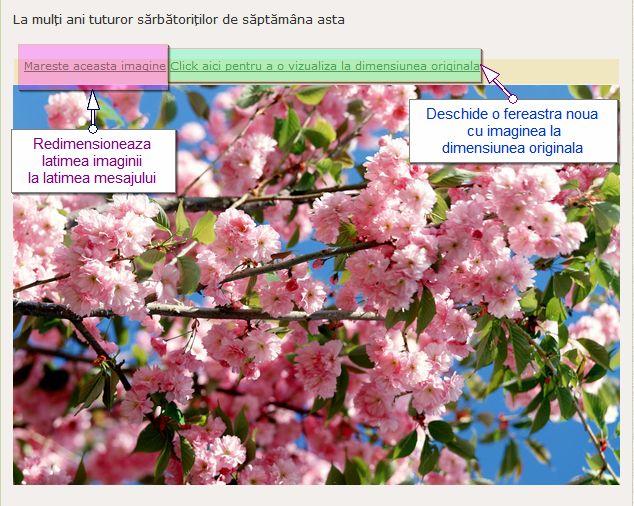 Redimensionarea automata a imaginilor 85708910
