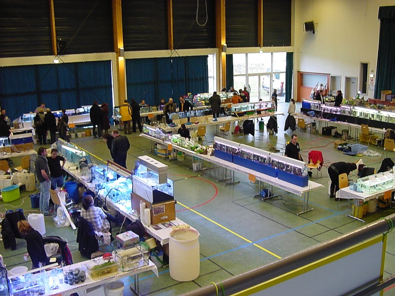 Bourse de l'Aqua96 le 17 février 2013 à Dossenheim(67) - Page 2 Dsc00058
