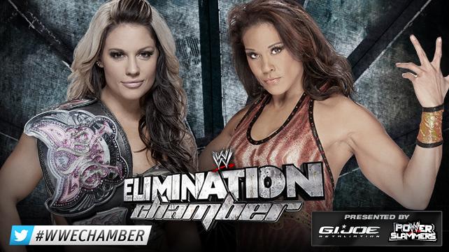 WWE Elimination Chamber du 17/02/2013 20130212