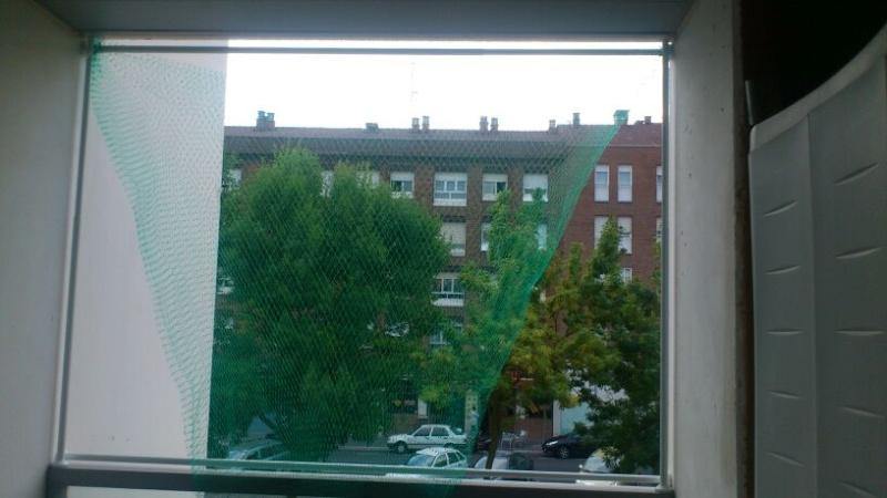 Resumen de ideas para mosquiteras y redes ventanas y balcón para gatos. - Página 2 81610