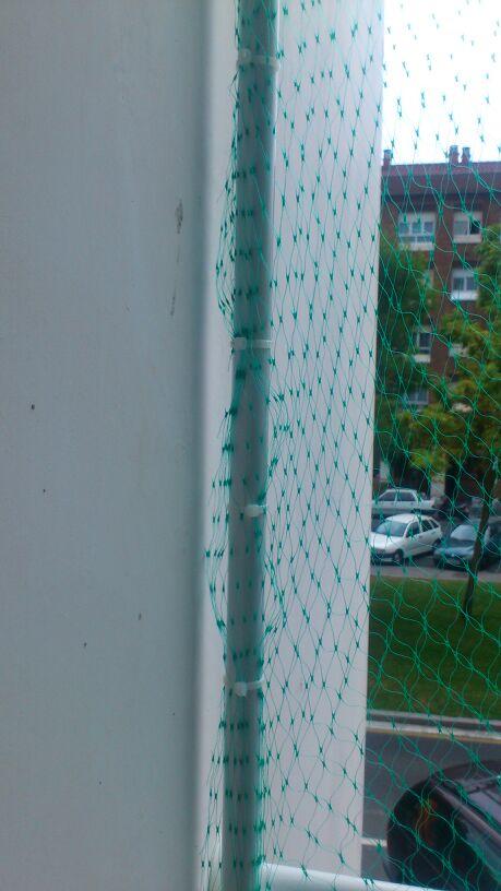 Resumen de ideas para mosquiteras y redes ventanas y balcón para gatos. - Página 2 81710