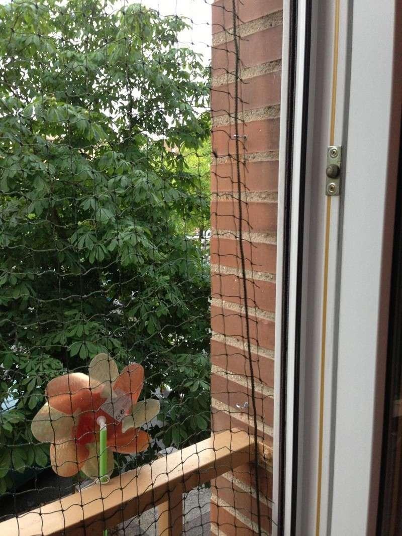 Como colocar un red de protección en una ventana Img_3911