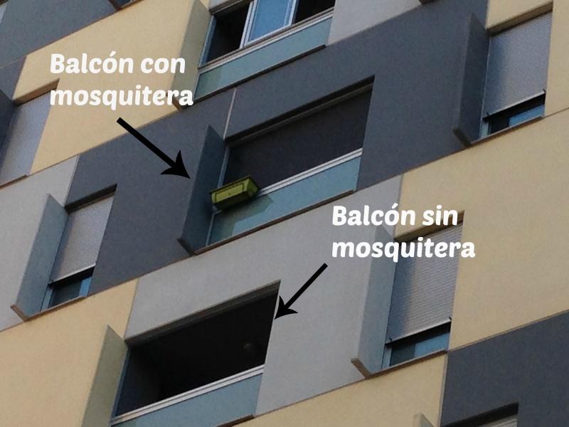 redes - Resumen de ideas para mosquiteras y redes ventanas y balcón para gatos. Img_4513