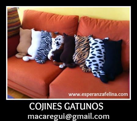 COJINES GATUNOS - Página 2 La_fot12