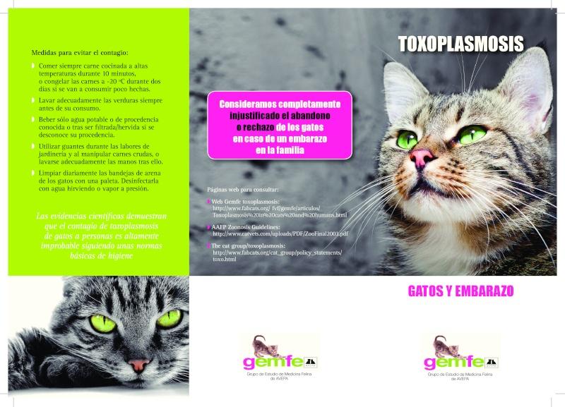 Toxoplasmosis, gatos y mujeres embarazadas. TODO lo que deberías saber. Page-015