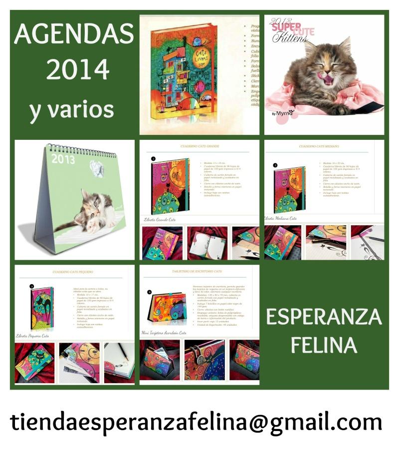 AGENDA Gatos 2014 , LIBRETAS, CALENDARIOS Y TARJETERO Picmon13