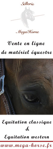 Le comportement du cheval Bander11