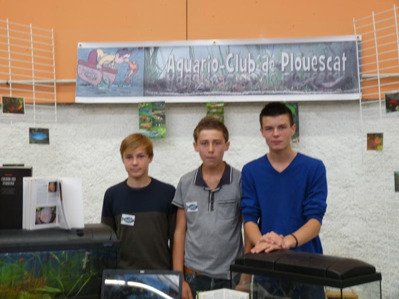 ACTIVITES CLUB AQUARIOPHILE DE PLOUESCAT 1611