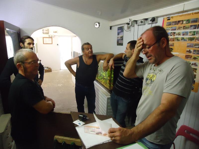 ACTIVITES CLUB AQUARIOPHILE DE PLOUESCAT Dsc01614