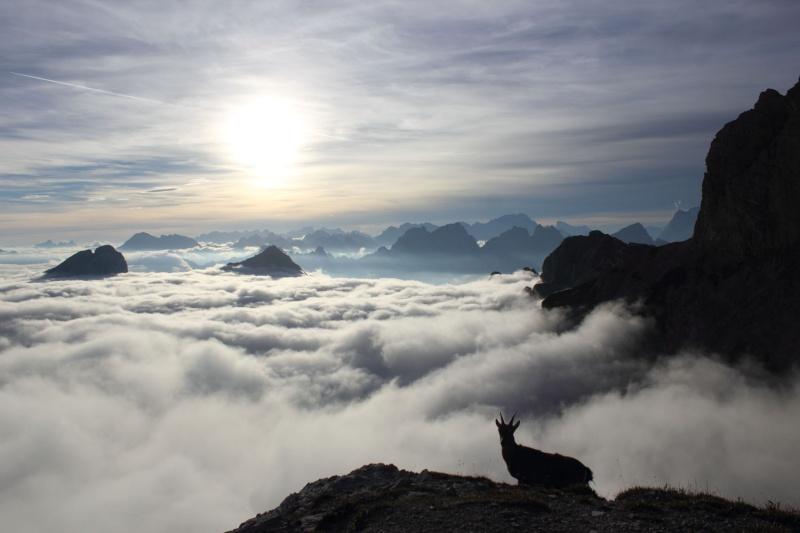 [Dolomiti] Dolomiti d'oltre Piave - Pagina 5 Dpp_1633