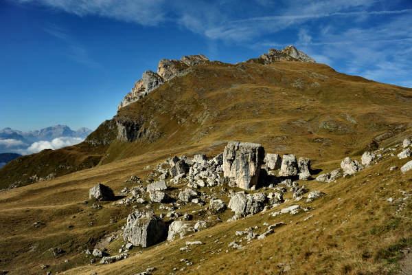 Il raduno estivo delle Dolomiti - Pagina 3 Escurs12