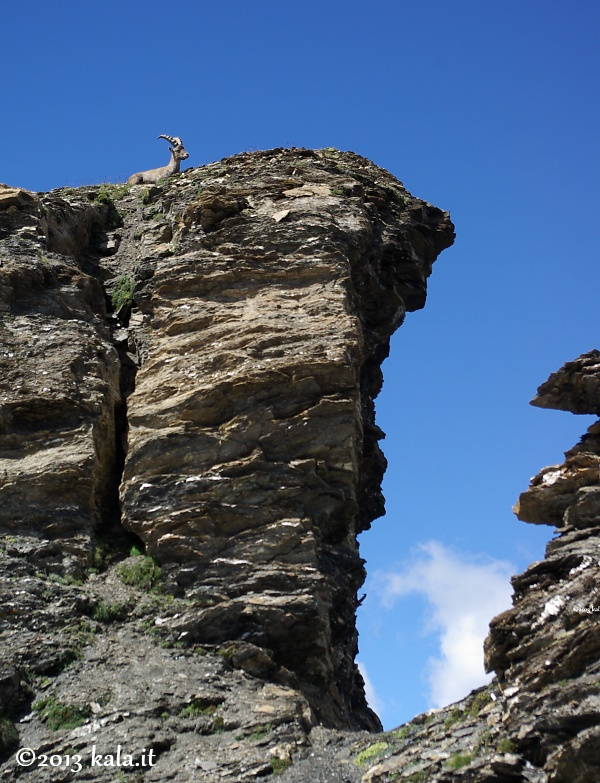 Botsoula (Corno Bussola), Val d'Ayas B0910