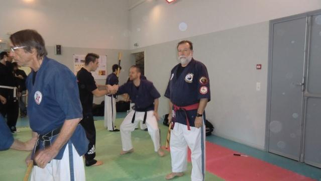 Stage de Small Circle Jujitsu avec Dave Castoldi à Elne les 2 et 3 mars 2013 Cimg1113