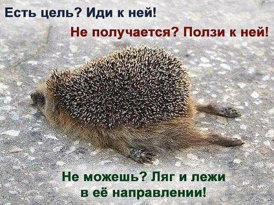 здесь мы шалим))) - Страница 3 Getima11