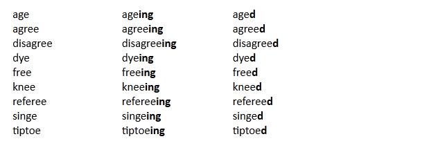 قواعد اضافة s , ed , ing فى نهاية الكلمات فى اللغة الانجليزية 910