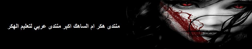 منتدى هكر ام الساهك اكبر منتدى عربي لتعليم الهكر