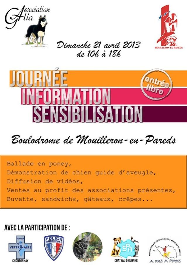 Journée information sensibilisation 21 avril 2013 Affich10