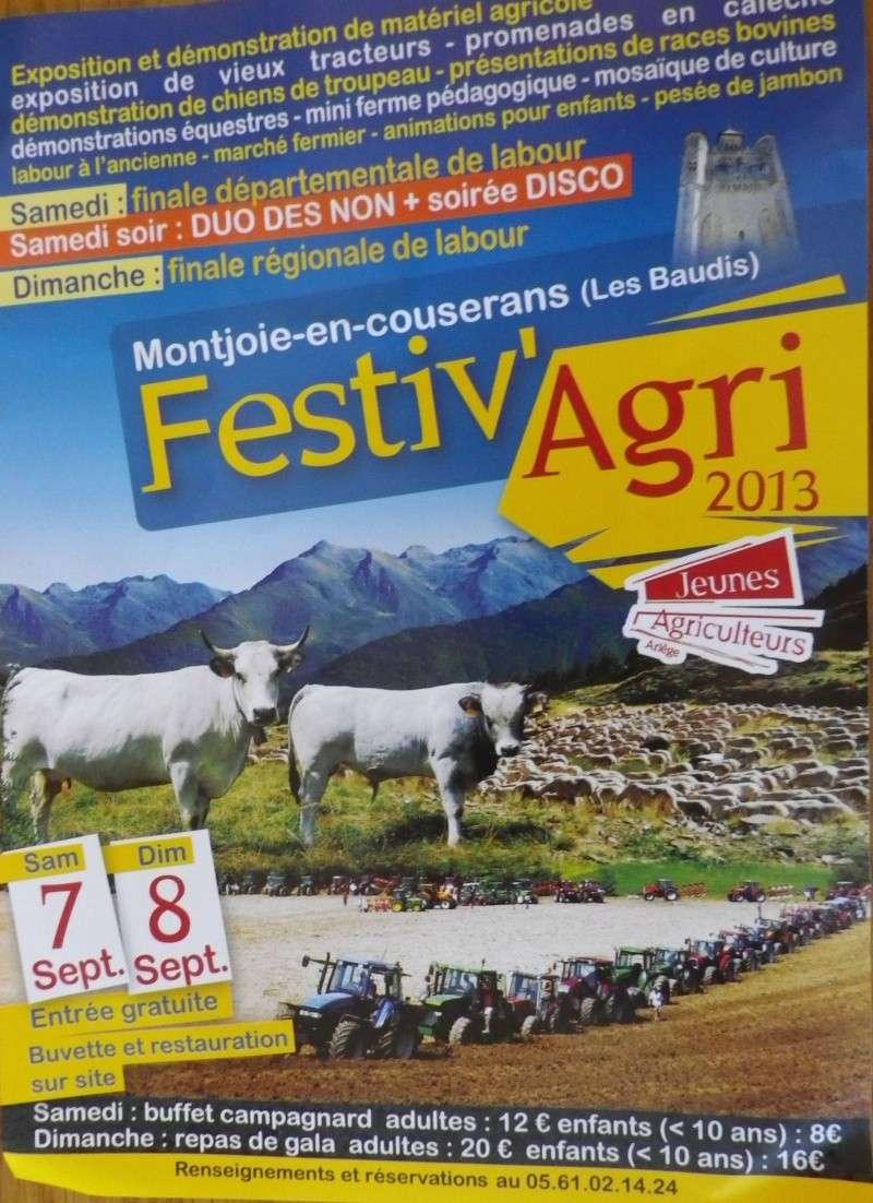 Finale départementale (Ariège) et régionale (Midi-Pyrénnées) de Labour Festiv10