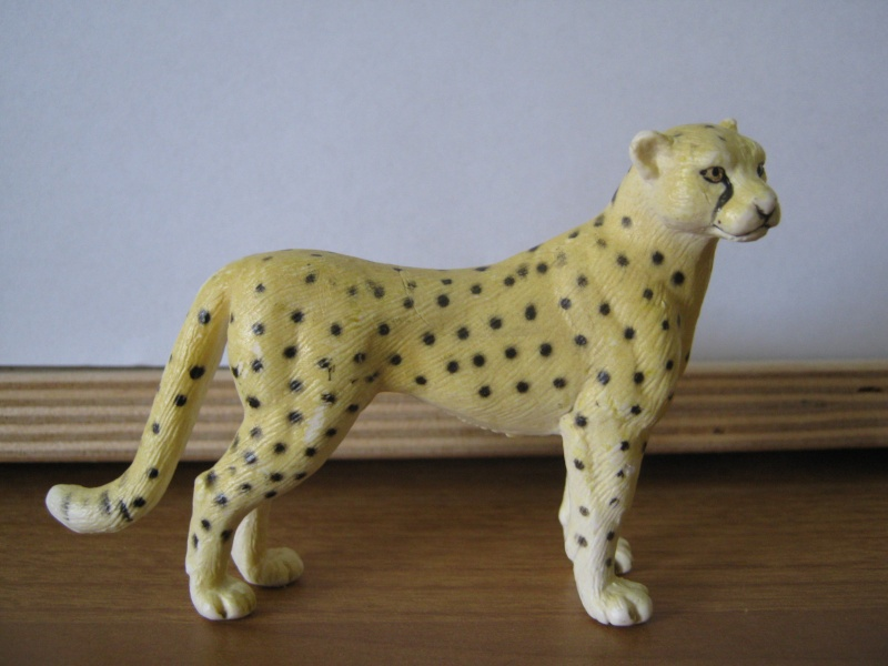 My new models of the last weeks - Page 3 Gepard10