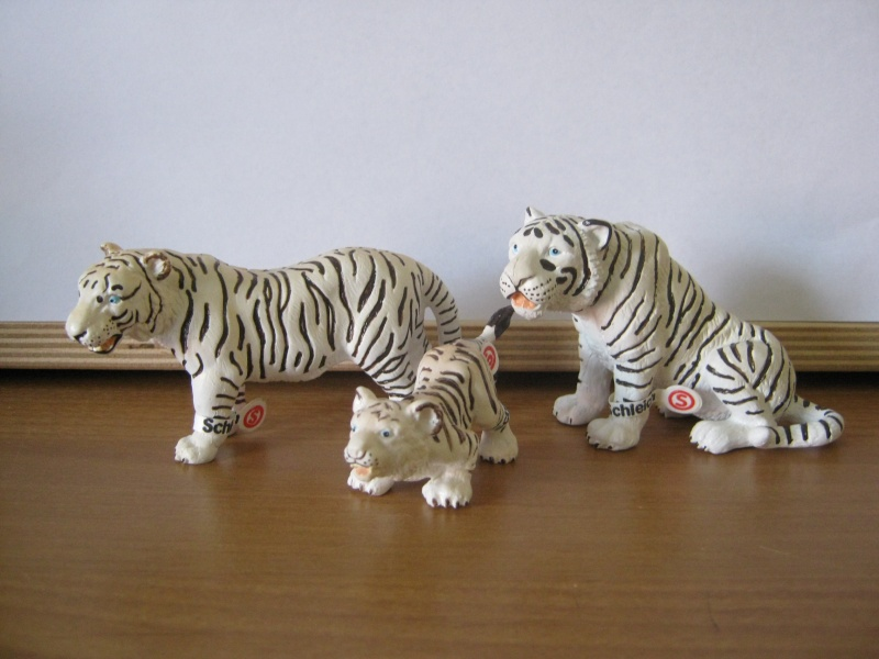 My new models of the last weeks - Page 2 Tiger_10