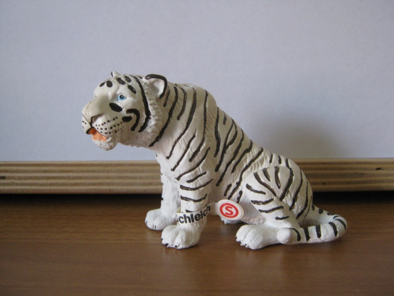 My new models of the last weeks - Page 2 Tiger_11
