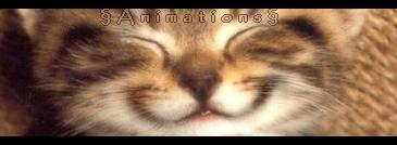 Animations.