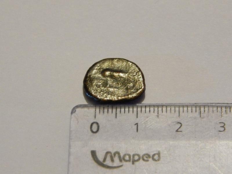 romaine ou pas ?  Dscn0219
