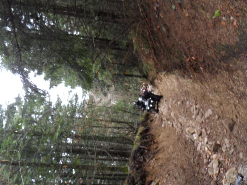 sortie en auvergne avec les cool quad Sam_1531