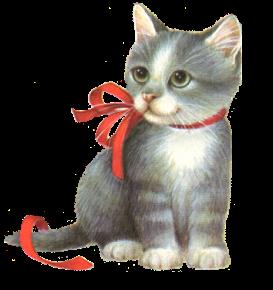 et 5 chatons de plus - Page 3 Dab80010