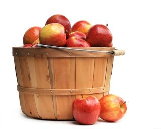 Concours de pommes Blogcm10