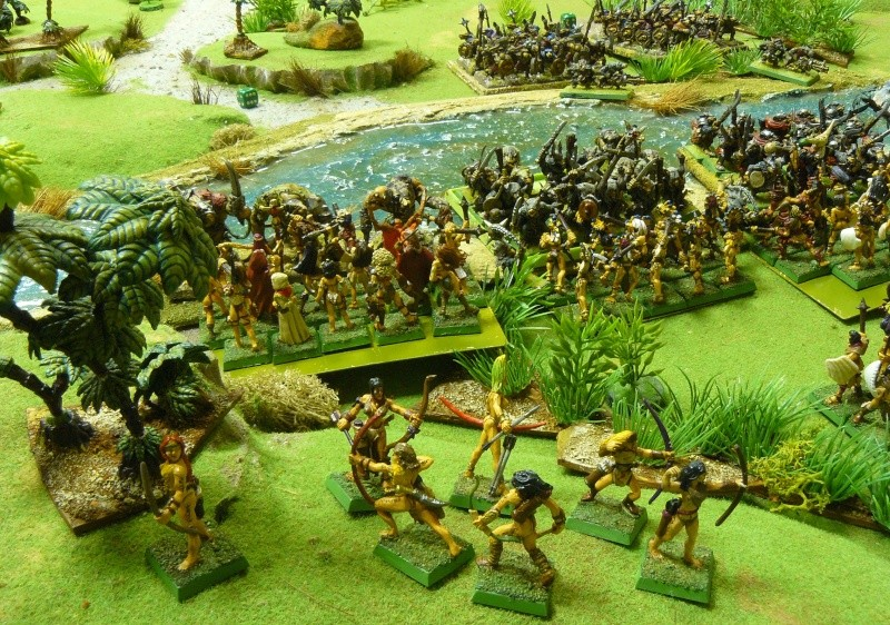 Warhammer Fantasy, Galerie de Batailles - Page 3 P1200413