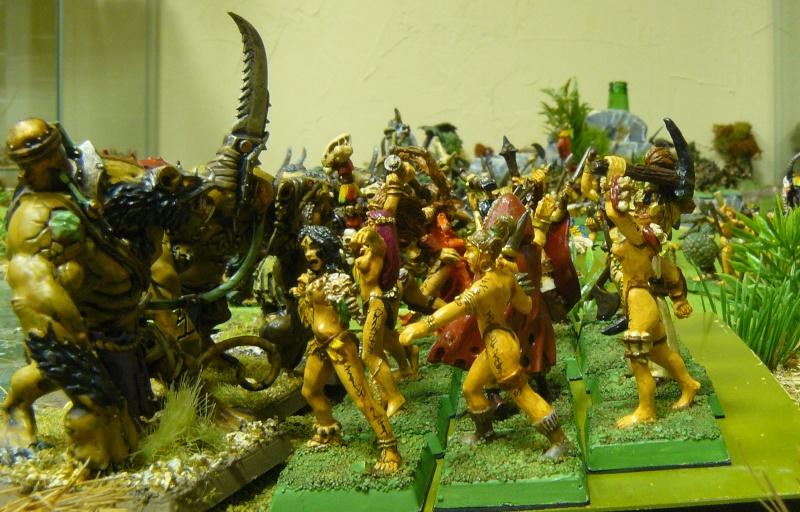 Warhammer Fantasy, Galerie de Batailles - Page 3 P1200416