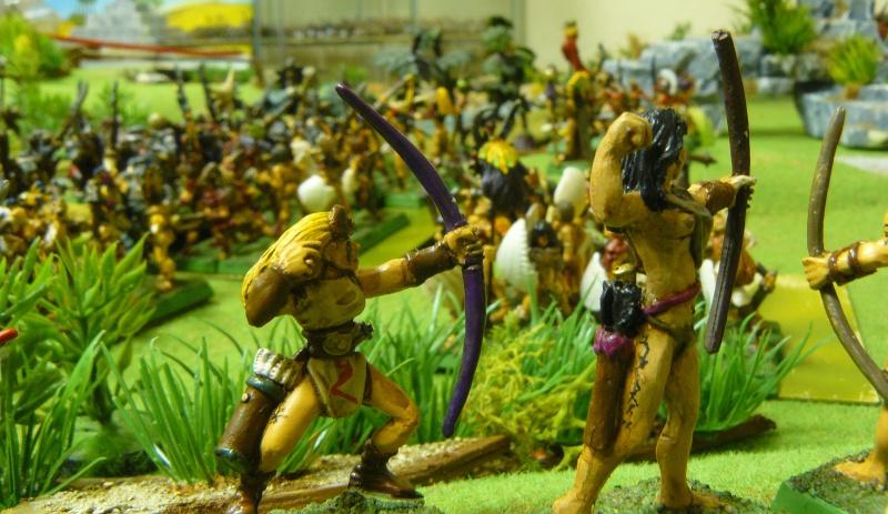 Warhammer Fantasy, Galerie de Batailles - Page 3 P1200417