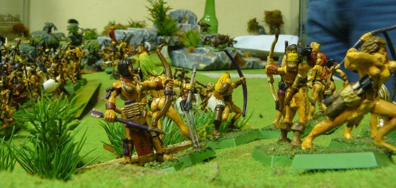 Warhammer Fantasy, Galerie de Batailles - Page 3 P1200418