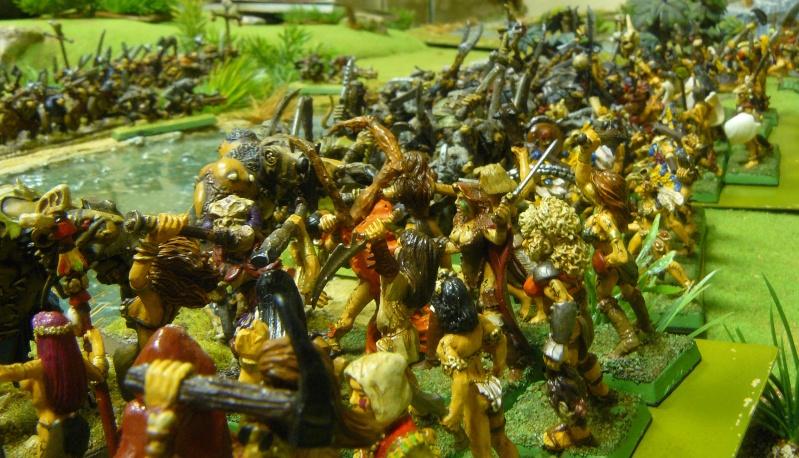 Warhammer Fantasy, Galerie de Batailles - Page 3 P1200419