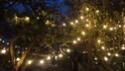 Vos photos nocturnes de Disneyland Paris Dsc06613