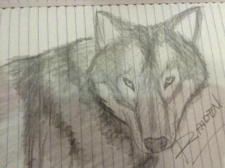 Random Drawings Img_0812