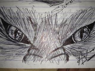 Random Drawings Img_0813