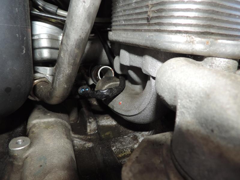 Refroidissement Moteur Porsche 996 Turbo Dscn0847